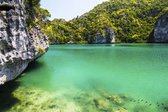 Very beautyful lagoon Royalty Free Stock Photos