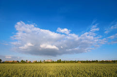 Very big cloud. Hanging over a city and farmland Stock Images