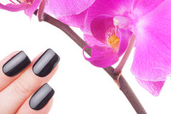 Very black nails Royalty Free Stock Images