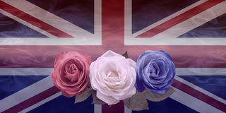 Very British Red White and Blue Roses Royalty Free Stock Photo
