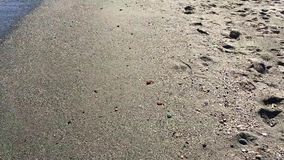 Very calm sea shore on sunny day stock footage