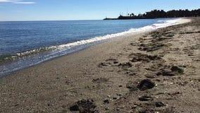 Very calm sea shore on sunny day stock video