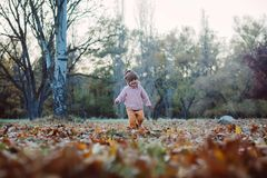 Very cheerful child having fun while tossing up leaves Royalty Free Stock Photos