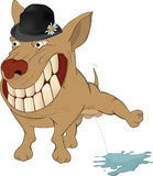 Very cheerful dog. Cartoon. The big dog in a hat Royalty Free Stock Photos