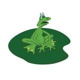 Very cheerful frog Stock Photos