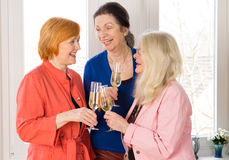 Very Closed Mom Friends Holding Glasses of Wines Stock Photo
