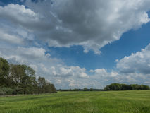 Very cloudy sky over a green meadow Royalty Free Stock Image