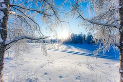 Very cold winter day scenery from Sotkamo, Finland. stock images