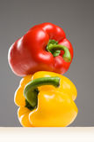 Very colorful bell peppers. Royalty Free Stock Photo