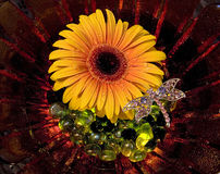 Gerbera Daisy Still Life Stock Photo
