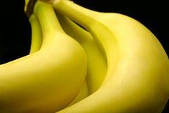 Very conceptual bananas :). Part of bananas brunch close-up. Black background Stock Image