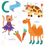 Very cute alphabet.C letter. Cat, cow, camel, carrots. Alphabet. Alphabet design in a colorful style Stock Image