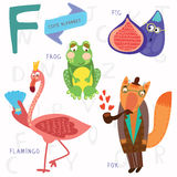 Very cute alphabet.F letter. Flamingos, figs, fox, frog. Alphabet design in a colorful style Stock Images