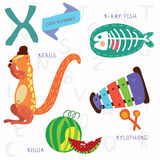 Very cute alphabet.X letter. Xerus,x-ray fish,xylophone,xigua. Alphabet design in a colorful style Stock Photography
