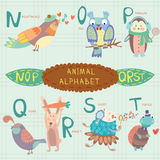 Very cute alphabet. N, o, p, q, r, s, t letters. Nightingale, ow. Cute animal alphabet.  . EPS 10 Stock Image