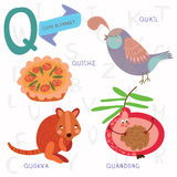 Very cute alphabet.Q letter. Quokka,quiche,quand ong,quail. Stock Images