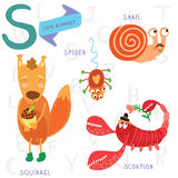 Very cute alphabet. S letter.Squirrel, scorpion, spider, snail. Alphabet design in a colorful style Royalty Free Stock Photos
