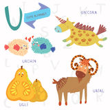 Very cute alphabet.U letter. Urial,urchin,unicorn,ugli fruit. Alphabet design in a colorful style Royalty Free Stock Images
