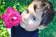 Very cute child with a pink rose in his hand Royalty Free Stock Photography