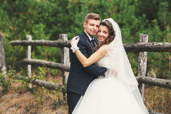 Very cute couple royalty free stock photo