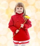 Very cute little girl with yellow flower. In her hand.Happiness, winter holidays, new year, and childhood Stock Photo