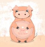 Very cute pig Royalty Free Stock Photo