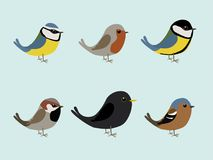 Cute songbirds comic illustration. Very cute songbirds collection comic illustration isolated on a colored background Stock Image
