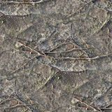 Very detailed seamless texture pattern of acre ground and dirt in high resolution. Found in germany stock photos