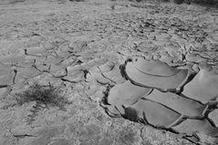 Very dry land - australia Stock Photo