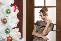 Very elegant girl ready for new year party Stock Photography