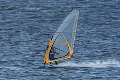 Very fast moving windsurfer Royalty Free Stock Photo