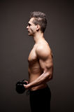 Very fit ripped young athlete. Royalty Free Stock Photo