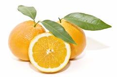 Very fresh oranges Stock Image