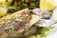 Very fresh seabream fish grilled with turnip greens. Traditional food from Portugal Royalty Free Stock Image