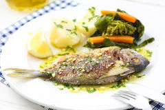 Very fresh seabream fish grilled with turnip greens Royalty Free Stock Photography