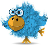 Very funny blue bird Royalty Free Stock Photos