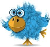Very funny blue bird. Illustration, very funny blue bird with big eyes Royalty Free Stock Photos