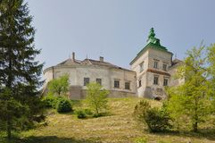 Very Good Castle in Ukraine Royalty Free Stock Photos