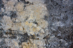 Very grungy cement wall Royalty Free Stock Photo
