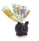 Very happy black piggybank stuffed with various euro banknotes Stock Image