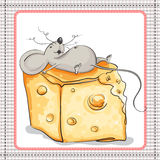 Very happy the mouse lies on a huge piece of cheese Stock Images