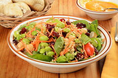 Very healthy salad. A bowl of salad made loaded with cranberries, carrots, edamame, pumpkin seeds and other superfoods royalty free stock photography