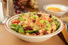 Very healthy salad. A healthy salad with chickpeas, edamame, pumpkin seeds, quinoa, spinach, and miso dressing stock photography