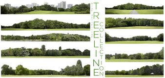 Very high definition Treeline collection isolated on a white bac royalty free stock photography