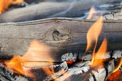 Very hot campfire close up Royalty Free Stock Images