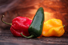 Very hot chili peppers Stock Images