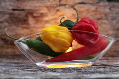 Very hot chili peppers Stock Image