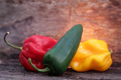 Very hot chili peppers Royalty Free Stock Photography