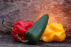 Very hot chili peppers Royalty Free Stock Photos