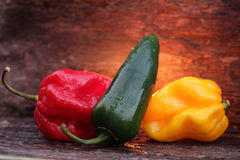 Very hot chili peppers Stock Photos
